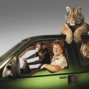 Wild Transport