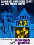 The Haunted House of Horror, (Horror House)