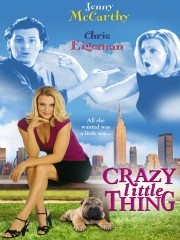Crazy Little Thing (The Perfect You)
