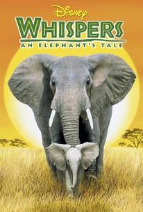 Whispers: An Elephant's Tale