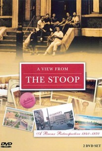 View from the Stoop: A Bronx Retrospective 1940-1970