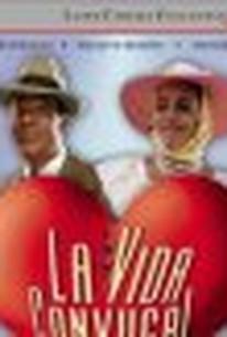 La Vida Conyugal (Married Life)