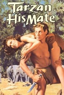 Erotic fiction tarzan 13
