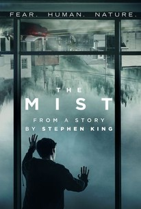 Image result for the mist season 1