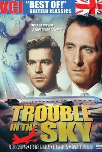 Trouble In The Sky