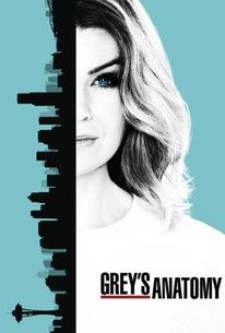 View Greys Anatomy - Season 13 (2016) TV Series poster on Ganool