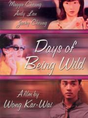 Days of Being Wild (A Fei zheng chuan)