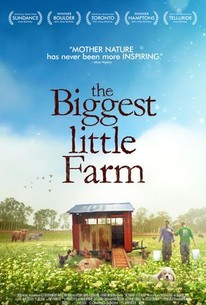 The Biggest Little Farm (2019) - Rotten Tomatoes