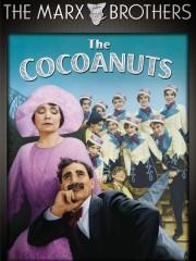 The Cocoanuts