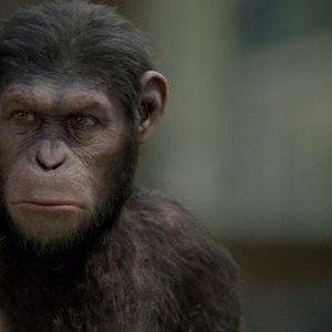 download rise of the planet of the apes hd