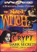 Crypt of Dark Secrets