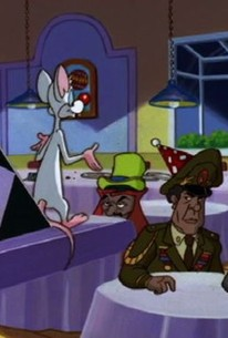 Pinky And The Brain Season 3 Episode 10 Rotten Tomatoes