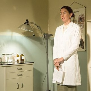 Masters of Sex (season 2, episode 2): Julianne Nicholson as Dr. Lillian Depaul
