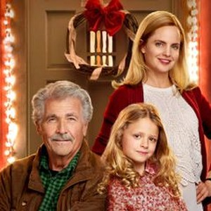 Ill Be Home For Christmas Dvd.I Ll Be Home For Christmas 2016 Rotten Tomatoes
