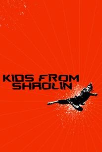 Shao Lin xiao zi (Shaolin Temple 2: Kids from Shaolin)