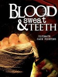 Blood Sweat & Teeth