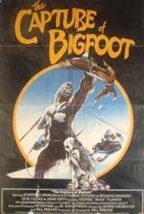 Capture of Bigfoot