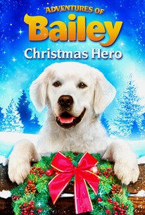 Adventures Of Bailey: Christmas Hero