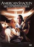 American Shaolin - King of the Kickboxers II