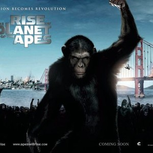 Rise Of The Planet Of The Apes Movie Quotes Rotten Tomatoes