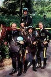 N.Y.P.D. Mounted