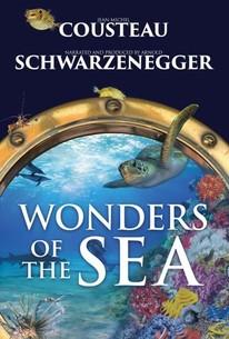 Wonders of the Sea