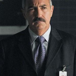 Miguel Sandoval as D.A. Mauel Devalos