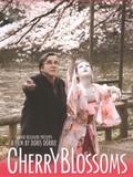 Kirschbl�ten - Hanami (Cherry Blossoms)