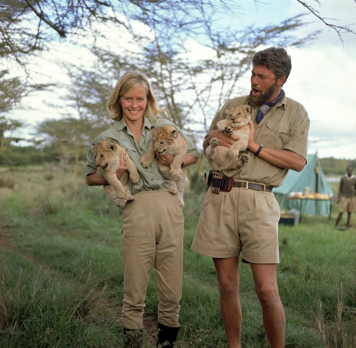 Image result for born free movie