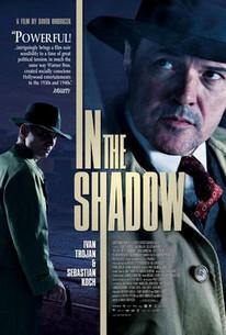Ve stínu (In the Shadows)