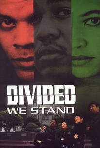 Divided We Stand
