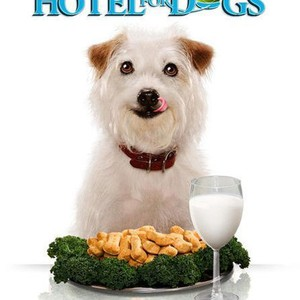 Hotel For Dogs 2009 Rotten Tomatoes