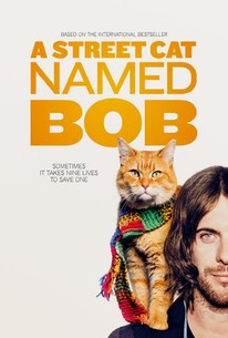 A Street Cat Named Bob movie poster