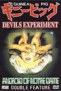Za ginipiggu: Akuma no jikken (Guinea Pig: Devil's Experiment)