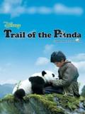 Touch of the Panda (Trail of the Panda) (Xiong mao hui jia lu)