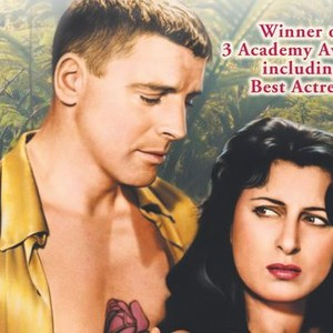 The Rose Tattoo 1955 Rotten Tomatoes