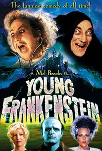 Image result for young frankenstein