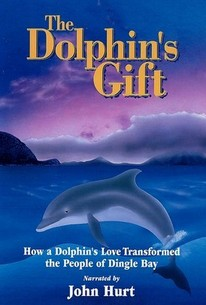 The Dolphin's Gift