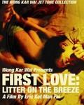 First Love: The Litter On The Breeze (Choh chin luen hau dik yi yan sai gaai)
