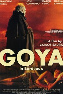 Goya in Bordeaux