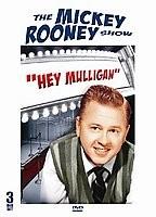 Mickey Rooney Show