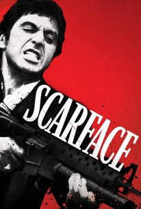 Scarface Movie Quotes Rotten Tomatoes