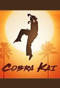 Cobra Kai - Season 1 Episode 3 - Rotten Tomatoes