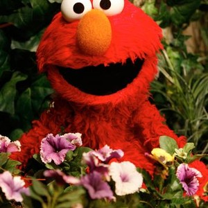Elmo is voiced by Kevin Clash