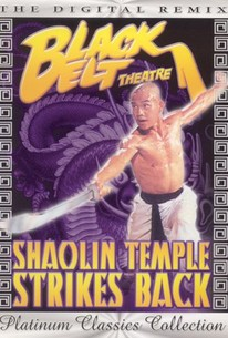 He nan song shan shao lin si, (Shaolin Temple Strikes Back)