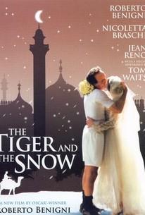 La tigre e la neve (The Tiger and the Snow)