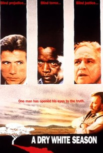 cry freedom movie summary