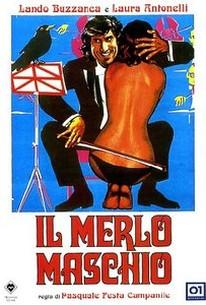 Il Merlo Maschio (Secret Fantasy)