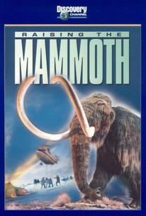 Raising the Mammoth