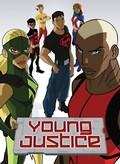 Young Justice: Season 1